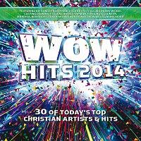 Různí interpreti – WOW Hits 2014