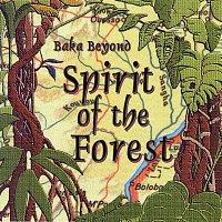 Baka Beyond – Spirit Of The Forest