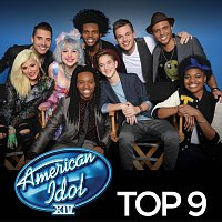 Různí interpreti – American Idol Top 9 Season 14