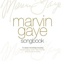 Marvin Gaye – The Best Of