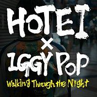 Hotei – Walking Through The Night [Single Version]