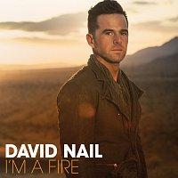 David Nail – I'm A Fire