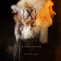 IAMX – Everything Is Burning (Metanoia Addendum)