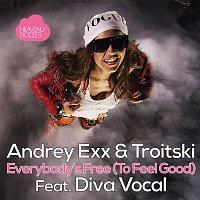 Andrey Exx, Troitski – Everybody's Free [To Feel Good] (Remixes)