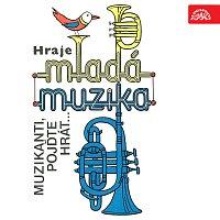 Mladá muzika, Petr Fink – Muzikanti, pojďte hrát...
