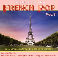 Gilles David Orchestra – Tribute To The French Pop - Vol. 1