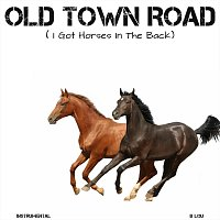 B Lou – Old Town Road (I Got Horses In The Back)