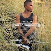 David Sanchez – Melaza
