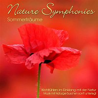 Dave Miller – Nature Symphonies: Sommertraume