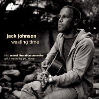 Jack Johnson – Wasting Time [e-Bundle No.4]
