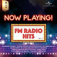 Různí interpreti – Now Playing! FM Radio Hits, Vol. 2