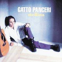 Gatto Panceri – Stellina