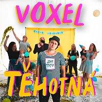 Voxel – Těhotná