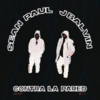 Sean Paul, J. Balvin – Contra La Pared