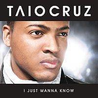 Přední strana obalu CD I Just Wanna Know [Radio Edit]