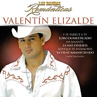 Valentín Elizalde – Las Bandas Románticas