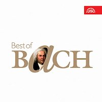 Různí interpreti – Best of Bach CD