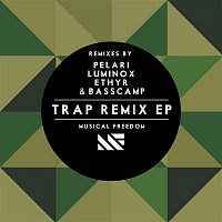 GTA, Dimitri Vegas, & Like Mike, Wolfpack – TRAP Remix EP