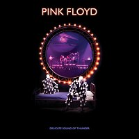 Pink Floyd – Delicate Sound Of Thunder (Restored - Re-Edited - Remixed)