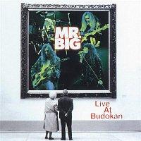 Mr. Big – Live At Budokan