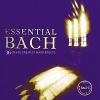 Různí interpreti – Essential Bach [2CDs]