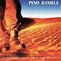 Pino Daniele – Non calpestare i fiori nel deserto (Remastered Version)