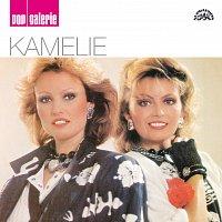 Kamelie – Pop galerie