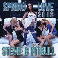 Stevie B, Pitbull – Spring Love 2013