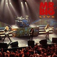 Mr. Big – Mr. Big Live
