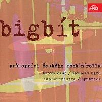 Různí interpreti – Bigbít: Průkopníci českého rock'n'rollu