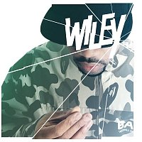Wiley – Wot Do U Call It?
