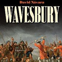 Přední strana obalu CD Návara: Wavesbury