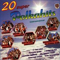 Různí interpreti – 20 Superpolkahits