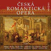 Různí interpreti – Česká romantická opera