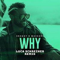 Shaggy, Massari – Why (Luca Schreiner Remix)