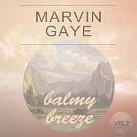 Marvin Gaye – Balmy Breeze Vol. 2