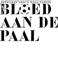 Neerlands Hoop In Bange Dagen – Bloed Aan De Paal