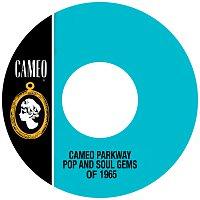 Různí interpreti – Cameo Parkway Pop And Soul Gems Of 1965