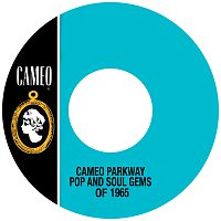 Různí interpreti – Cameo Parkway Pop And Soul Gems Of 1965