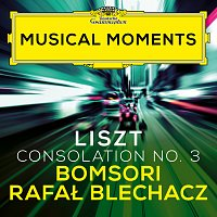 Bomsori, Rafal Blechacz – Liszt: Consolations, S. 172: No. 3 Lento placido in D Flat Major (Transcr. Milstein for Violin and Piano) [Musical Moments]