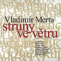 Vladimír Merta – Struny ve větru