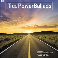 Různí interpreti – True Power-Ballads / 3CD set