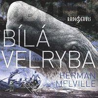 Miroslav Středa – Bílá velryba (MP3-CD) CD-MP3
