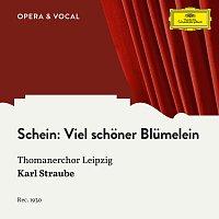 Thomanerchor Leipzig, Karl Straube – Schein: Viel schoner Blumelein