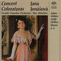 Jana Jonášová – Koncertní koloratury
