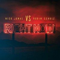 Nick Jonas, Robin Schulz – Right Now