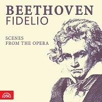 Různí interpreti – Beethoven: Fidelio. Scény z opery