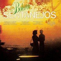 Různí interpreti – Boleros Sertanejos