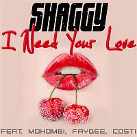 Shaggy, Mohombi, Faydee, Costi – I Need Your Love