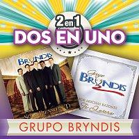 Grupo Bryndis – 2En1